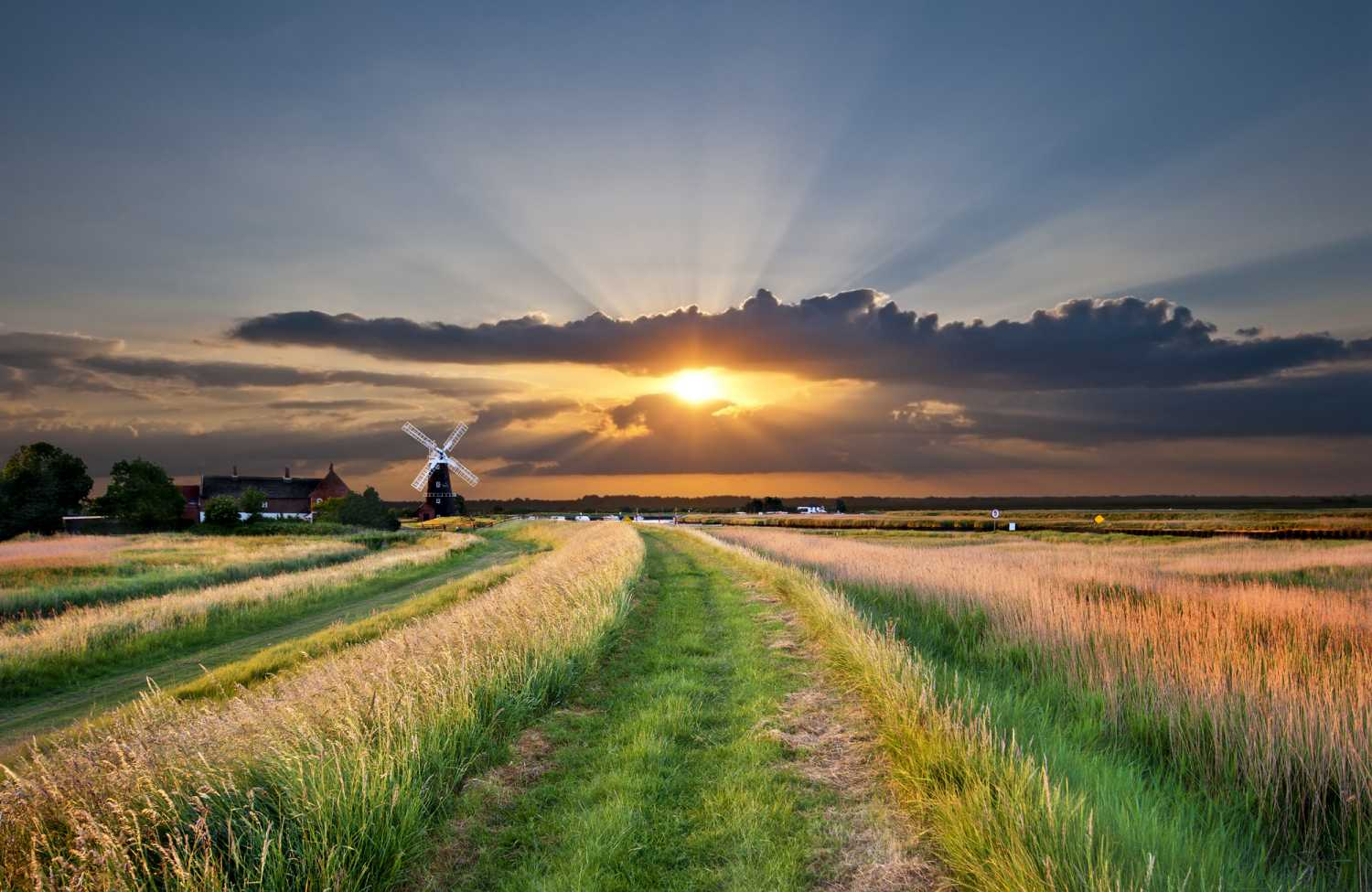Dog Friendly Cottages In The Norfolk Broads